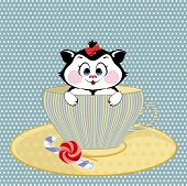 picture of kitty  - small kitty with bow sits in a circle - JPG
