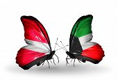 image of kuwait  - Two butterflies with flags on wings as symbol of relations Latvia and Kuwait - JPG