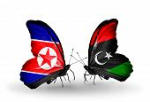 pic of libya  - Two butterflies with flags on wings as symbol of relations North Korea and Libya - JPG