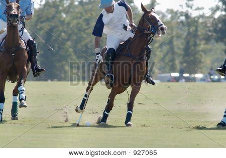 Polo Player Striking The Ball
