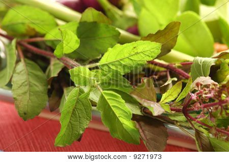 Holy Basil (Bai Grapow)