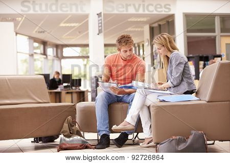 Male College Student Working With Mentor