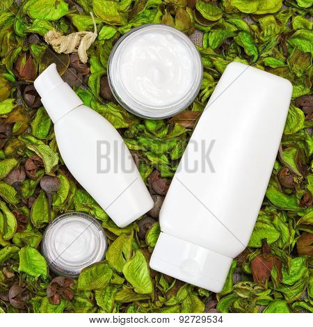 Cosmetic Skin Care Products In Dry Leaves