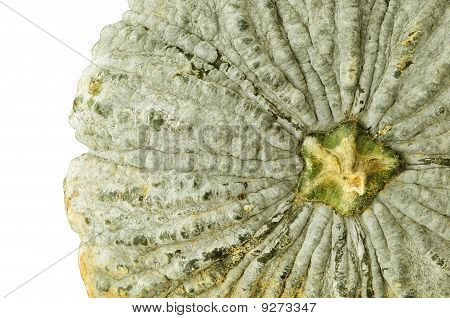 Close Pumpkin As Top View