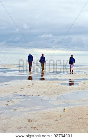 People Walking In Tidal Flat
