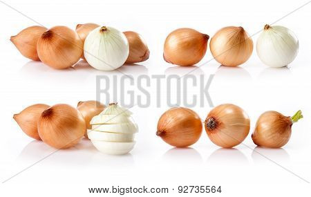 composite of fresh onion