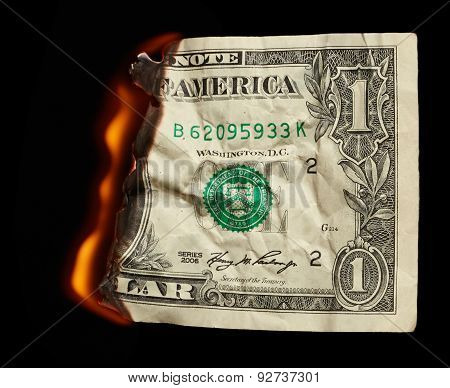 Burning Dollar