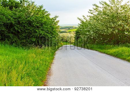 Road Downhill Trough Hilly Landscape