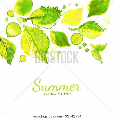 Vector Green  Leaves Summer Background