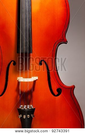 Close-up violoncello in vertical position