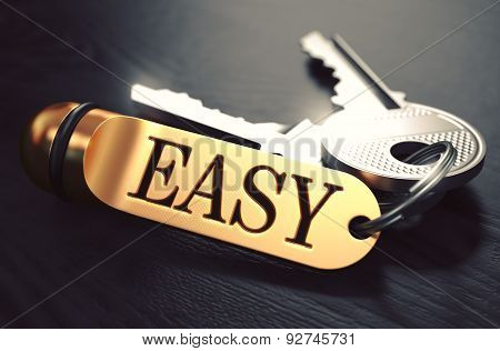 Easy Concept. Keys with Golden Keyring.