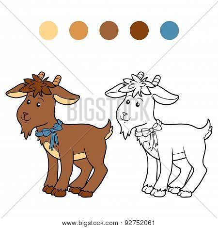 Coloring Book (goat)