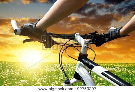 Hands in gloves holding handlebar of a bicycle
