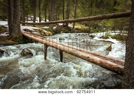 mountain river, stones, water flow, the roots of the trees, landscape, wildlife, river,