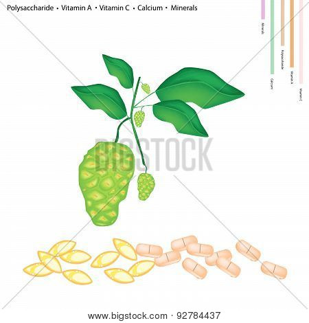 Noni Or Morinda Citrifolia With Vitamin A, C And Calcium