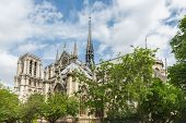 stock photo of notre dame  - Notre Dame cathedral in springtime Paris France - JPG