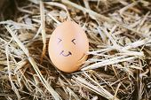 pic of morbid  - Painted eggs about emotion on the face - JPG