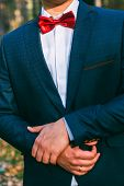 image of jacket  - groom jacket butterfly jacket wedding detail man - JPG