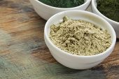 image of chlorella  - a bowl of kelp seaweed powder with spirulina and chlorella in background - JPG