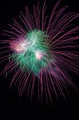 stock photo of firework display  - Colorful firework in a night sky - JPG