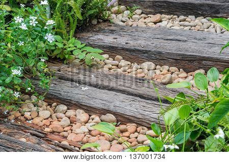 wood walk way and rocks background in garden