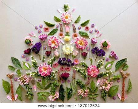 Parts of flowers organized as a pyramid