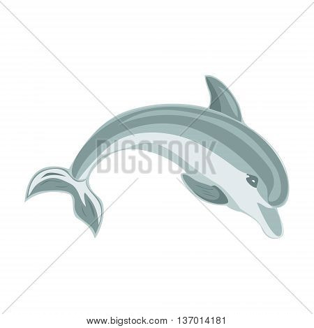 Jumping dolphin on a white background. Vector illustration.