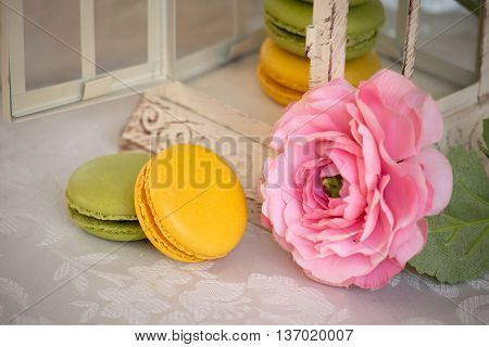 French dessert macarons with rose. Almond cookies.