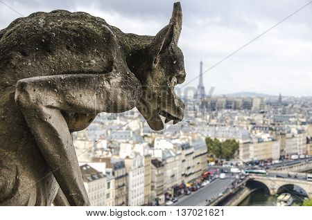 Chimera Of Notre Dame Cathedral In Paris, France. Focus On Statue