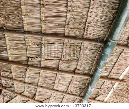 Thatch roof inside the old cottage of the Thai farmer.