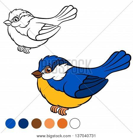 Coloring Page. Color Me: Titmouse.