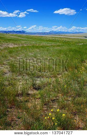 Mountains create a beautiful backdrop for grazing land near Dillon, Montana.