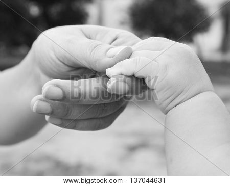 hand of mother holding hand of baby in black and white