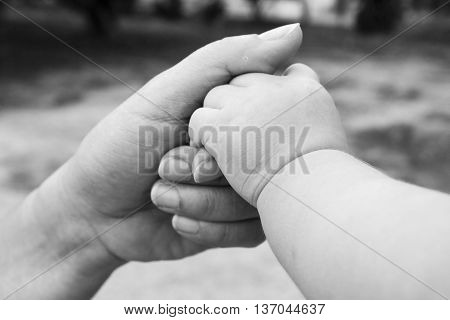 background baby hold finger of mother in black and white