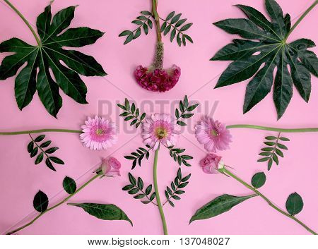 Flower bouquet deconstructed on pink surface beautiful