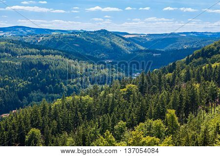 Mountains scenery. Panorama of grassland and forest