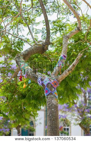 Yarn Bombing In A Tree. European Park.