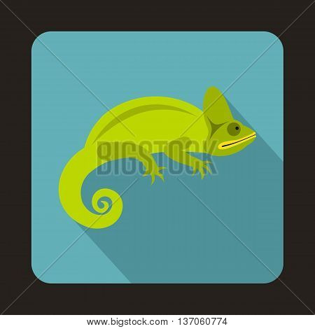 Chameleon icon in flat style with long shadow. Reptiles symbol