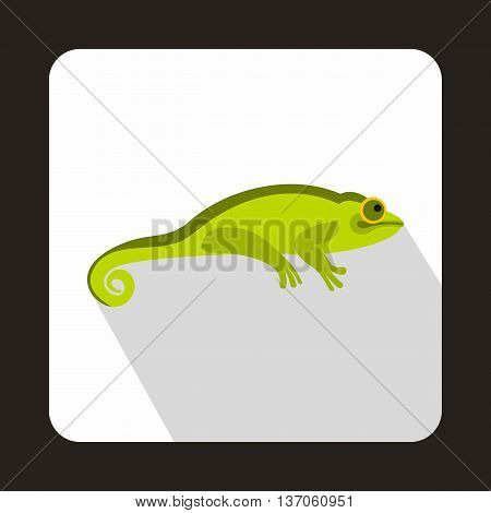 Green chameleon icon in flat style with long shadow. Reptiles symbol