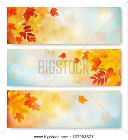 Three abstract autumn banners with color leaves.