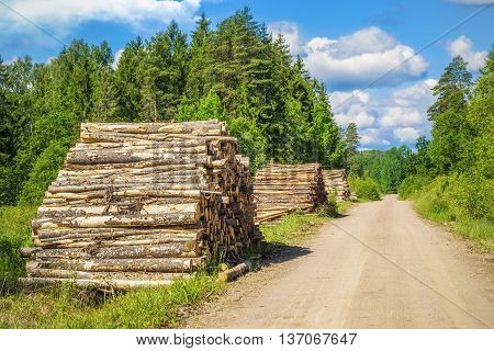 Piles of logs near forest road in summer