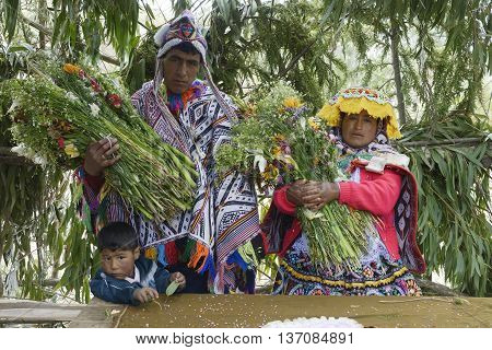 October 22 2012 Amaru Peru: Ancient Andean wedding ceremony. View of a just married couple and one of their children.
