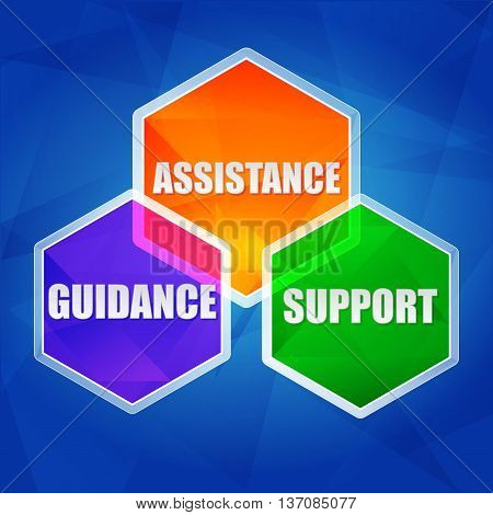 assistance, support, guidance - business concept words in color hexagons over blue background, flat design, vector