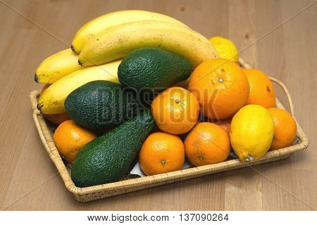 Still life with tropical fruits: bananas, avocados, lemons, oranges and tangerines lie on a brown wicker tray. Photo closeup