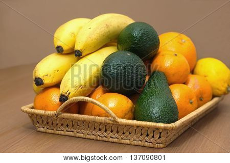 Still life with tropical fruits: bananas, avocados, lemons, oranges and tangerines lie on a brown wicker tray. Horizontal photo closeup