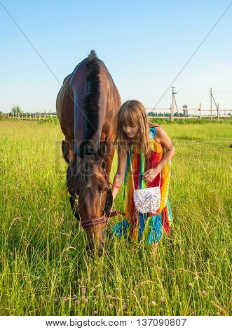 Girl in a bright sundress communicate with a horse in a meadow
