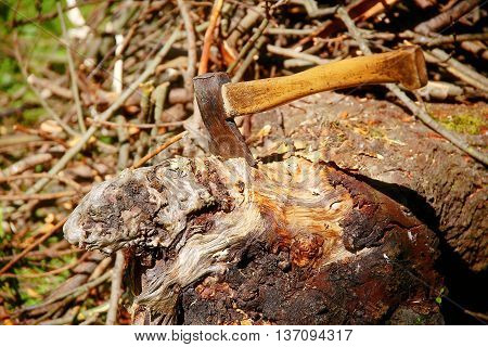 axe with wooden handle cut into beautiful structured leftover of tree