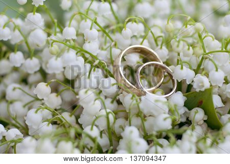 gold wedding rings on a background with flowers