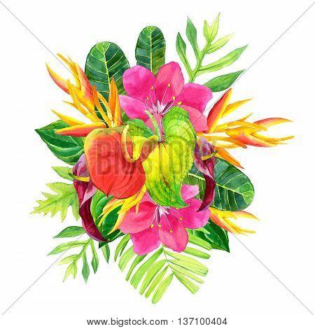 Illustration With Realistic Watercolor Flowers. Botanical Illustration.