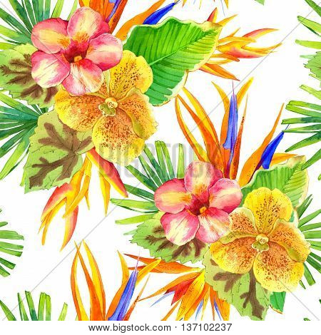 Beautiful tropical plants on white background. Composition with lily strelitzia palm and begonia leaves and orchid.